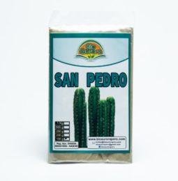 San Pedro Powder (100g-3.53lb) – buy  super fresh powder