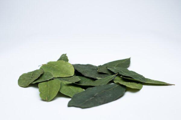 Buy Powder of Erythroxylum 100% Natural - Andean World Peru