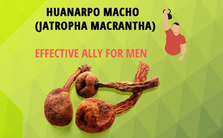 Huanarpo Macho - BLOG